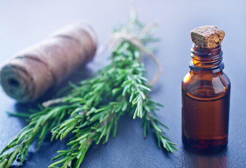 Extractul de rozmarin ameliorează crampele musculare