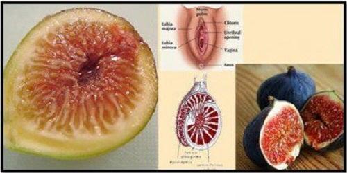 Somochinele intră în categoria de alimente sănătoase pentru femei
