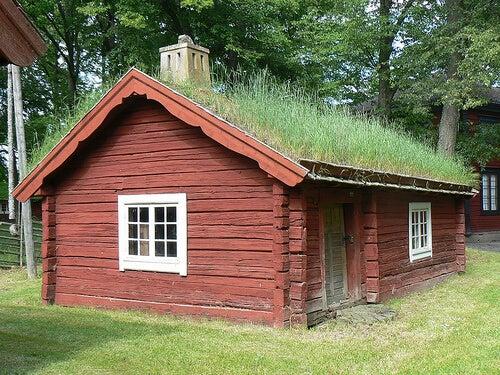"""Câmpurile electromagnetice pot fi evitate dacă ai o casă """"eco"""""""