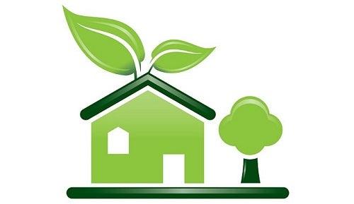 Detergent organic făcut în casă pentru a proteja mediul
