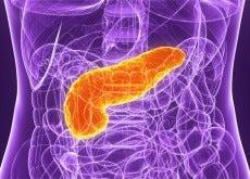 Pancreasul este un organ deseori ignorat