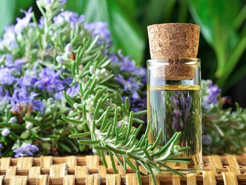 Rozmarinul poate fi inclus în numeroase remedii naturiste