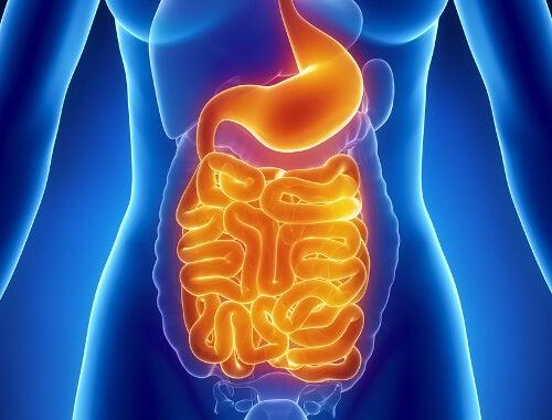 Printre altele, diabetul poate afecta sistemul digestiv
