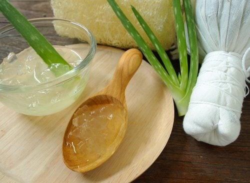 Gelul de aloe vera este folosit în creme naturale pentru bătăturile picioarelor
