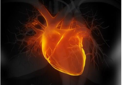 Trebuie să-ți protejezi inima dacă vrei să eviți orice probleme cardiace
