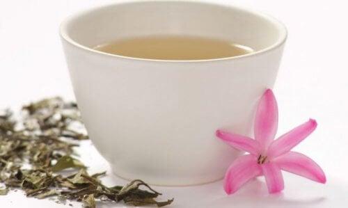 Ceaiul alb este unul dintre alimentele bogate în flavonoide