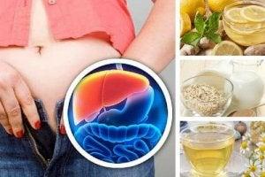 ceaiuri pt detoxifierea ficatului