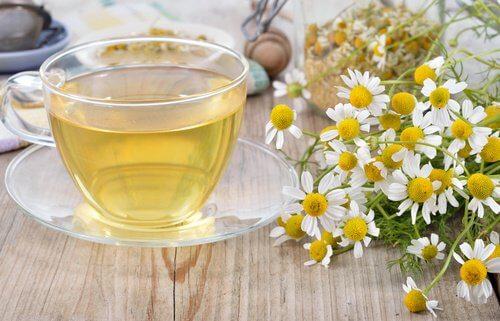 Detoxifierea ficatului cu ceai de mușețel