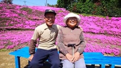 Un gest de iubire înduioșător: Grădina Kuroki