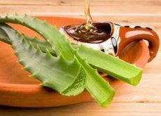 Combinația de aloe și miere ameliorează gastrita