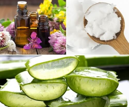 Prepară acasă un gel natural din aloe vera și ulei de cocos