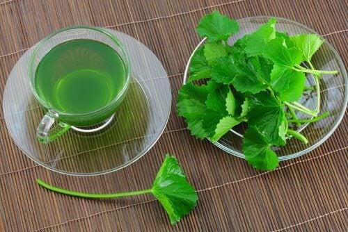 Diverse ceaiuri te ajută să remediezi picioarele umflate