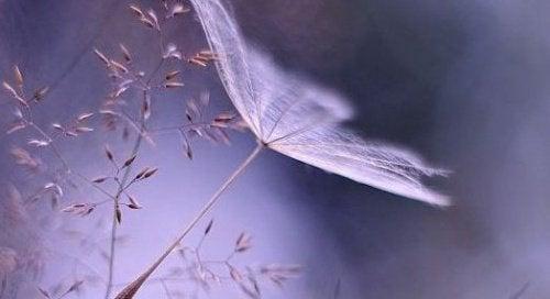 Timpul vindecă toate rănile dacă înveți să ierți