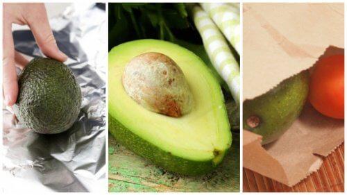 5 trucuri pentru a coace un avocado în câteva minute