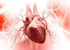 Sindromul inimii frânte mai este numit și cardiomiopatie takotsubo