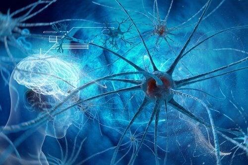 Diverse alimente sunt foarte benefice pentru creierul uman