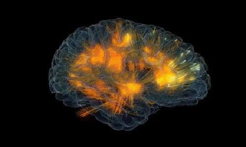 Creierul are nevoie de energie suficientă pentru a funcționa corespunzător