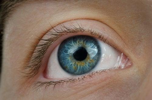 Pierderea vederii poate fi cauzată de înaintarea în vârstă