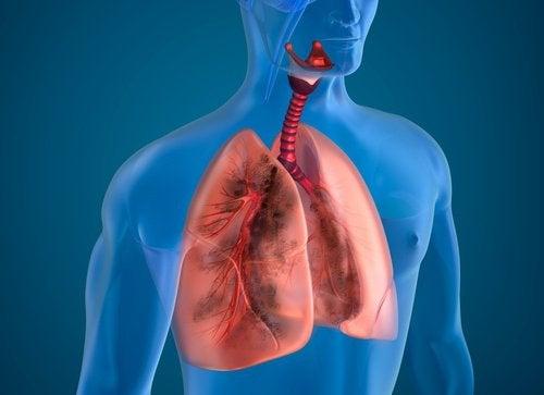 Plămânii trebuie curățați de tutun