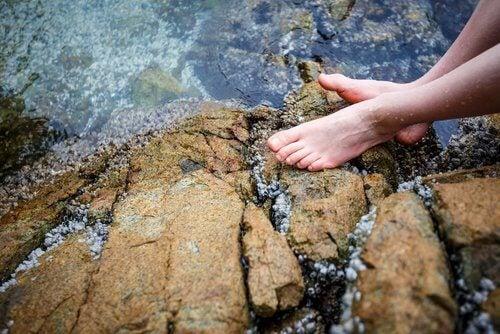 Picioare scufundate în apa de râu