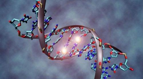 Cancerul are o componentă genetică
