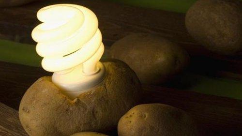Află cum să-ți luminezi camera cu un cartof