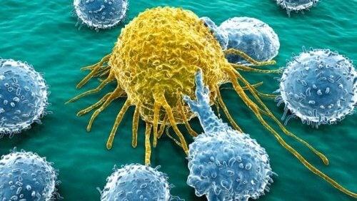 Celule canceroase depistate cu ajutorul testelor medicale