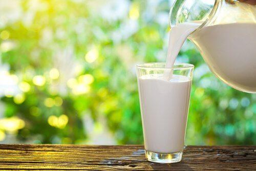 Hormonii folosiți pentru producerea lactatelor pod duce la îngrășare