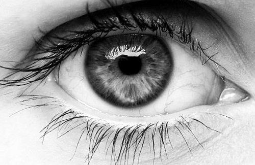 Anumite chimicale pot afecta pupila