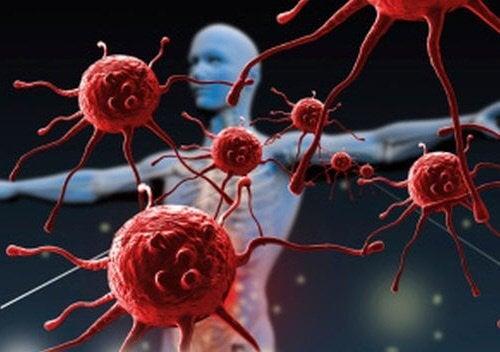 O alimentație sănătoasă te ajută să-ți fortifici sistemul imunitar