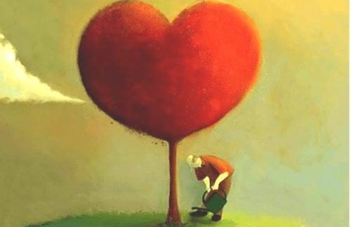 Exprimă-ți zilnic afecțiunea față de persoana iubită