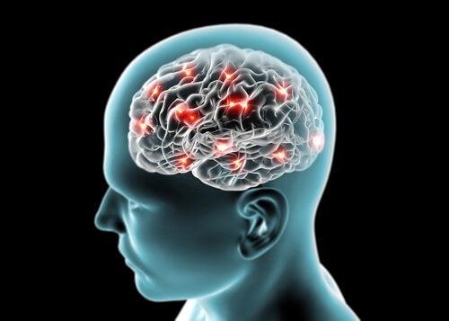 Creier cu funcții active
