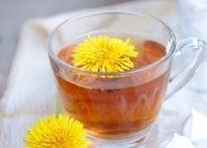 Păpădia este un ingredient util în gastronomie