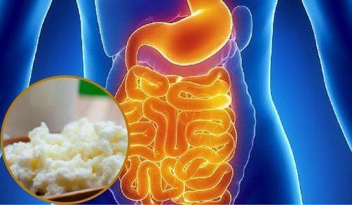 Cum să-ți refaci flora intestinală în mod natural