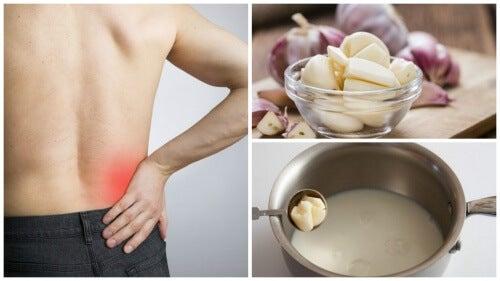 Remediu pentru sciatică cu lapte cu usturoi