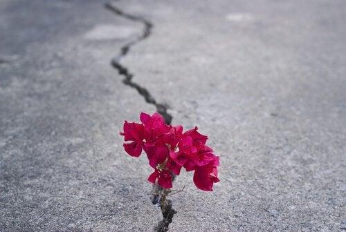 Trebuie să fii puternic și să nu renunți la speranță