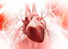 Sindromul inimii frânte afectează în principal femeile