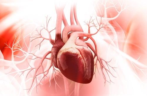 Sindromul inimii frânte și metode de prevenire