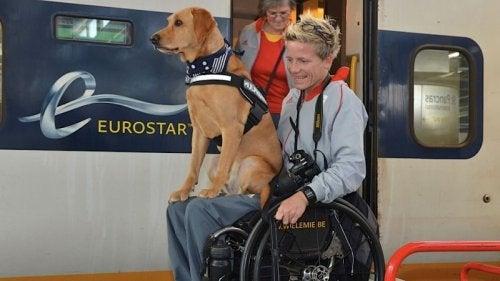 Sportiva paralimpică Marieke Vervoort în scaun cu rotile