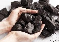 Cărbunele are multe utilizări în gospodărie