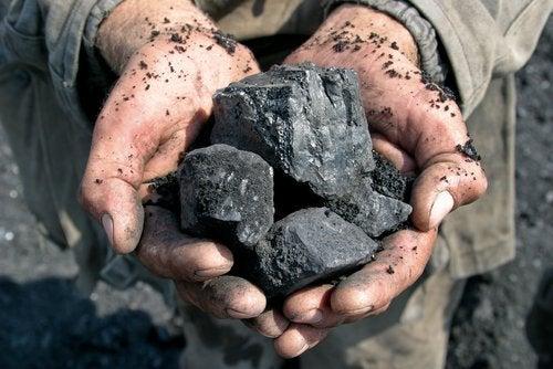Cărbunele îndepărtează mucegaiul din locuință