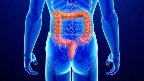 Negii pot fi simptome ale cancerului anal