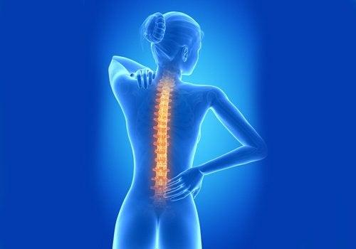 Postura corectă a coloanei vertebrale