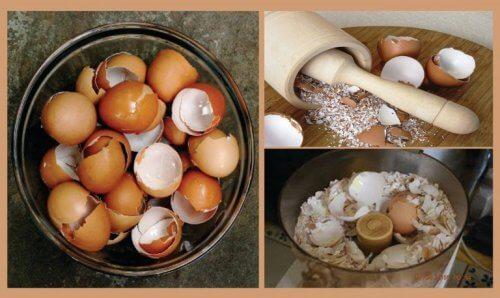 6 remedii naturiste cu cojile de ouă