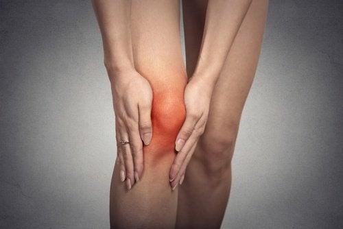 Beneficii ale murelor precum combaterea inflamațiilor