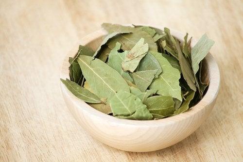 Beneficii ale uleiului de dafin preparat din frunze uscate