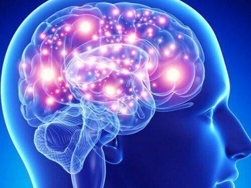 Beneficii ale uleiului de cocos pentru creier