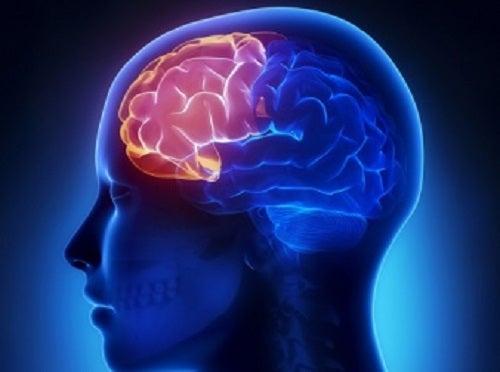 Un dezechilibru hormonal poate provoca probleme cognitive