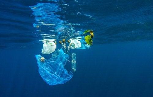 Efectele nocive ale plasticului precum poluarea apei