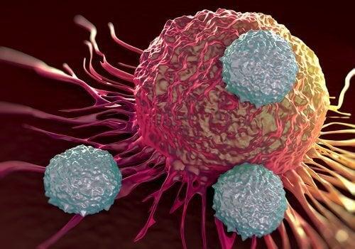 Alimentele alcaline ajută la prevenirea cancerului